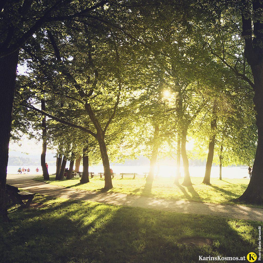 Foto von einem Sonnenuntergang am Attersee, durch Bäume fotografiert.