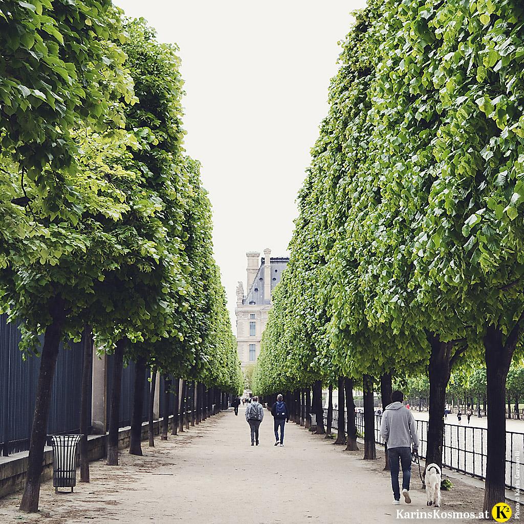 Allee bei den Tuileries in Paris.